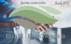 BDC Brókers logo